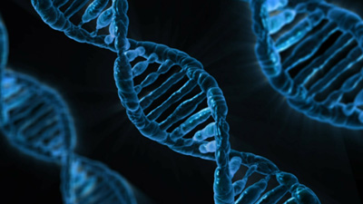 Learn more about your expunging DNA sample in Denver, Arapahoe County, Adams County and across Colorado.